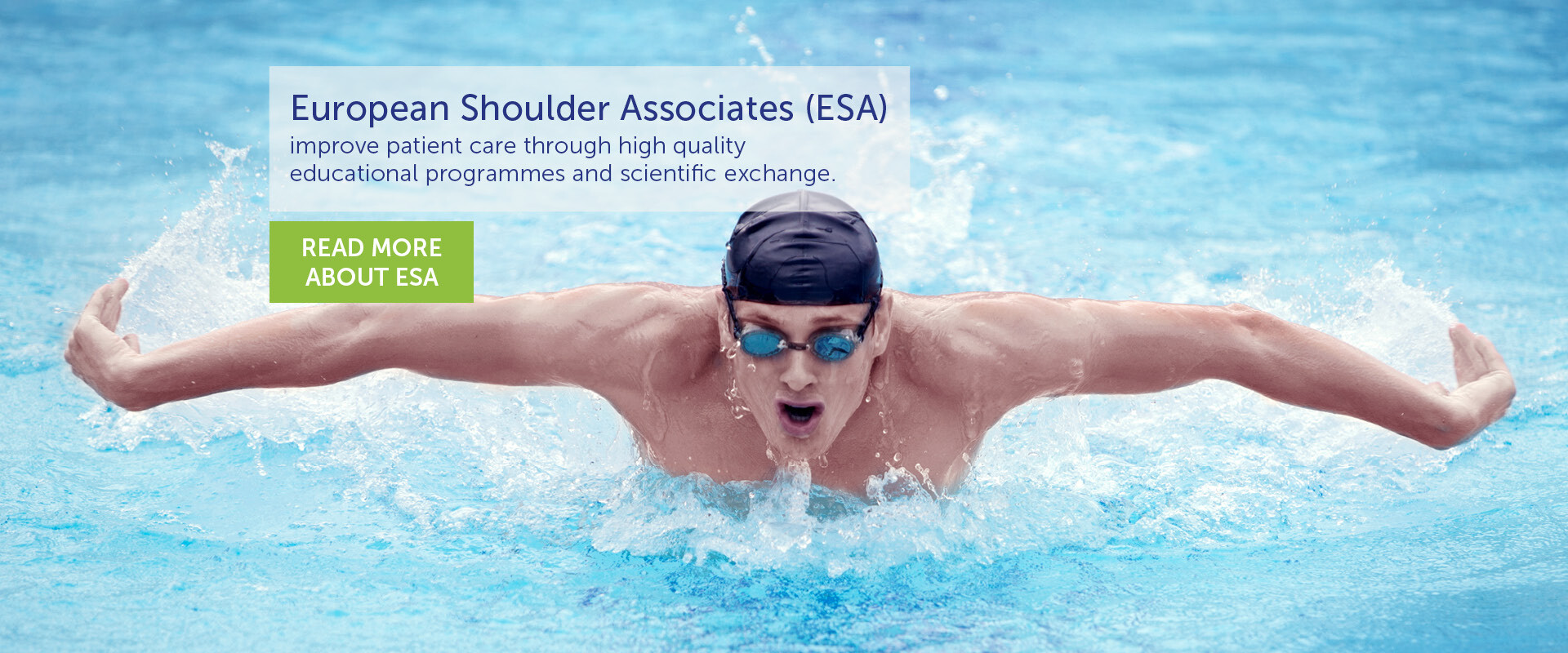 european shoulder association